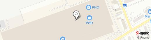 Дейси оптик на карте Кургана