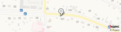 Исетский центр ветеринарии на карте Исетского