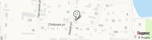 Продуктовый магазин на карте Патрушевой