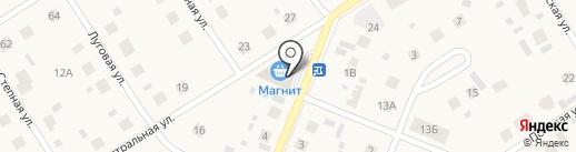 Центральный на карте Патрушевой