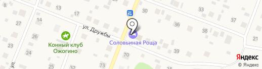 Соловьиная роща на карте Патрушевой