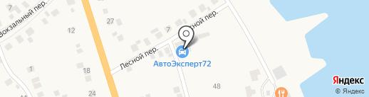Золотая Стрекоза на карте Боровского