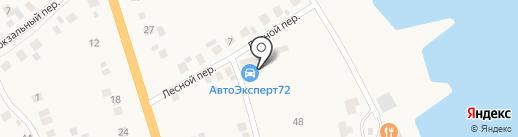 СибМет Плюс на карте Боровского