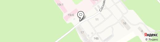 Елочка на карте Винзилей