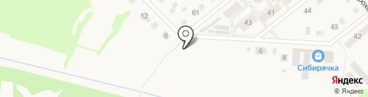 Берёзка на карте Ялуторовска