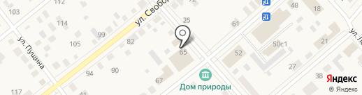 Киоск по продаже мясной продукции на карте Ялуторовска