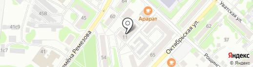 Зубр на карте Тобольска
