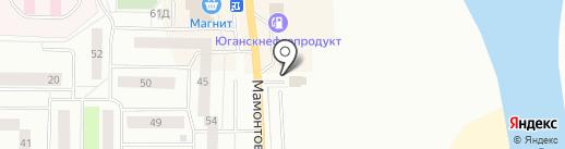 Шиномонтажная мастерская на карте Нефтеюганска