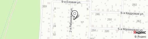 Бастет на карте Сургута