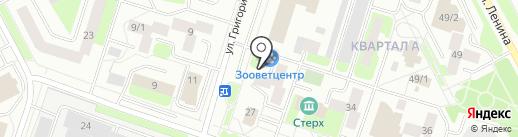 Биг Сервис Центр на карте Сургута
