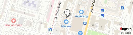 Золотая стрекоза на карте Омска