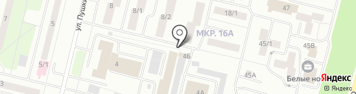 Эми на карте Сургута
