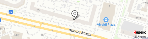 Snowimage на карте Сургута