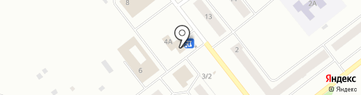 Светлана на карте Ноябрьска