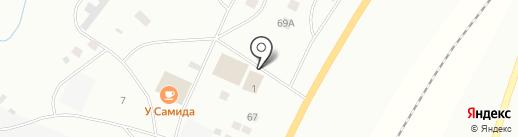 Чайка на карте Ноябрьска