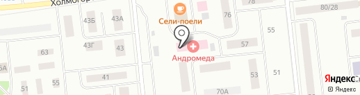 Инструмент-Центр на карте Ноябрьска