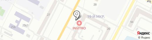 ЭЛИТВЕТ на карте Нижневартовска