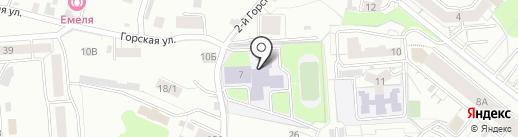 Небесные ласточки на карте Новосибирска