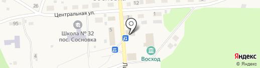 Кенгу 24 на карте Сосновки