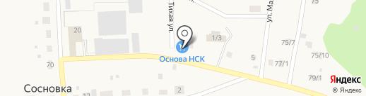 ОСНОВА НСК на карте Сосновки
