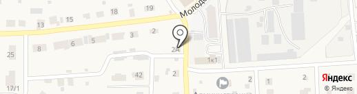 АвтоТокио на карте Элитного
