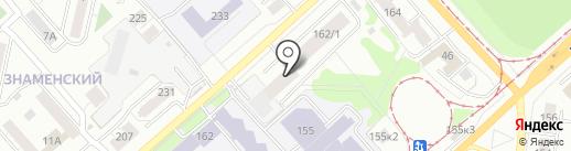 Бизон на карте Новосибирска