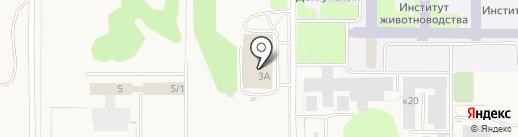 Светлица на карте Краснообска