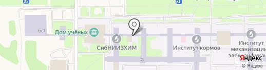 Айкью-парта на карте Краснообска