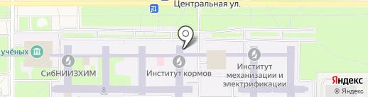 Эко Сибирь на карте Краснообска
