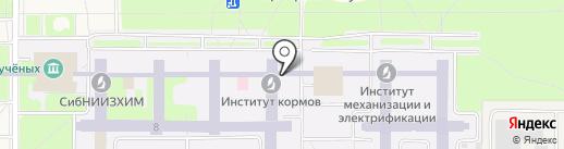 ARTWAX на карте Краснообска