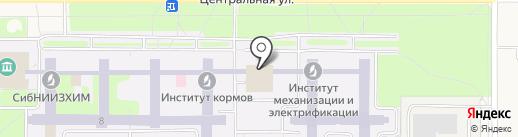 Sushi & Rolls на карте Краснообска