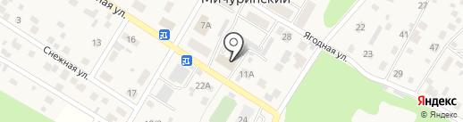 Мичуринское сельское потребительское общество на карте Мичуринского