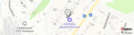 Дерево Жизни на карте Восхода