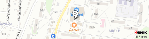 Садовый центр Татьяны Переладовой на карте Бердска