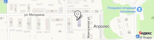 Теремок на карте Агролеса