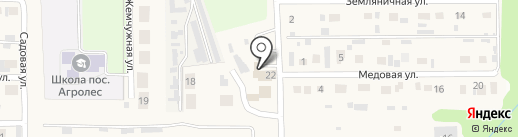 Мустанг на карте Агролеса