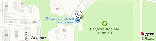 Новосибирская зональная станция садоводства Россельхозакадемии, ФГУП на карте Агролеса