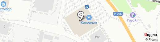Колорлон на карте Бердска