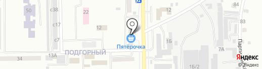 Ника на карте Искитима
