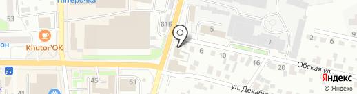 Осьминог на карте Искитима