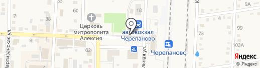 Рябинка на карте Черепаново