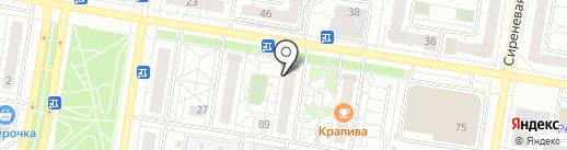 Багира на карте Барнаула