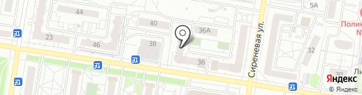 Азалия на карте Барнаула