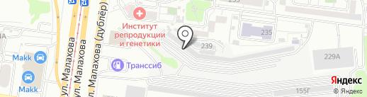 Автомобилист на карте Барнаула