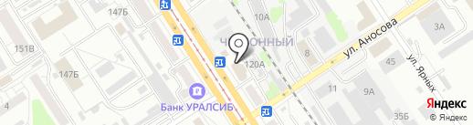 Первоцвет на карте Барнаула