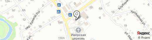 Центральная городская библиотека им. Л.С. Мерзликина на карте Новоалтайска