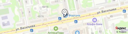 ДНС на карте Бийска
