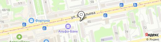 Алтай на карте Бийска