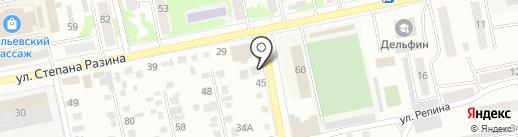 Дог на карте Бийска
