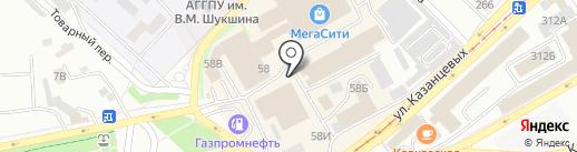 Чайка на карте Бийска